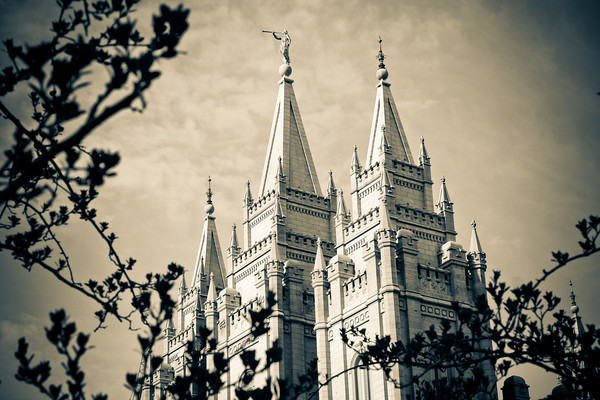 Salt Lake Temple through Trees in Sepia