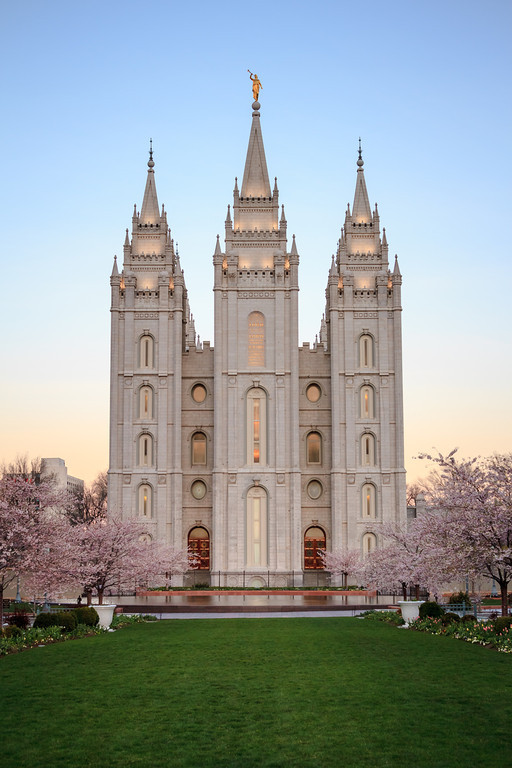 Salt Lake Temple at dawn with spring blossoms