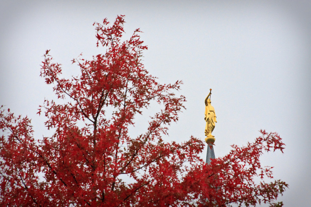 Boston Temple Moroni