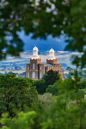 Logan Temple through trees - Portrait