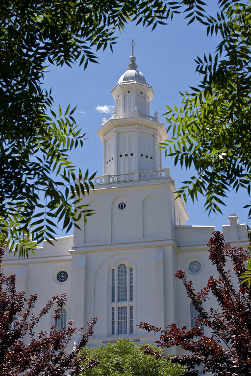 St George Temple behind leaves