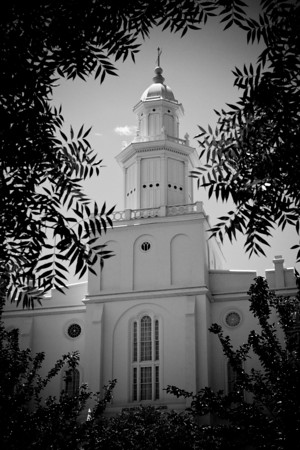 St George Temple behind leaves black and white